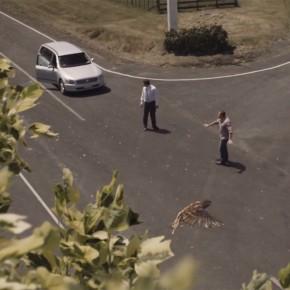 ¿De qué hablarían dos conductores antes de chocar mortalmente?